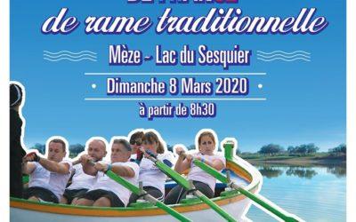 Première manche du championnat de rame traditionnelle à Mèze